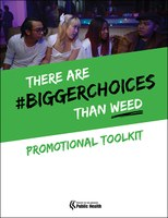 bigger-choices-toolkit-sm.jpg